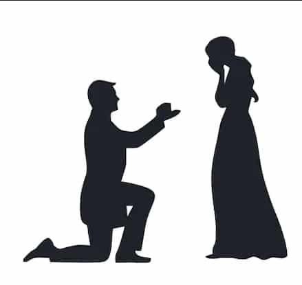 Aptal Aşık 9 / Benimle Evlenir misin?
